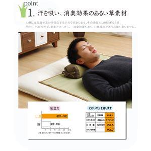 枕 まくら い草枕 消臭 ピロー 国産 無地 高さ調整 『モデル 角枕』 ブラウン 約30×15cm