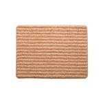 バスマット 洗える 抗菌防臭 吸水 部屋干しOK 『プラチナクリーン ナリ』 ローズ 約45×60cm