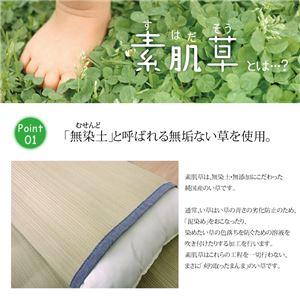 国産無染土い草使用 『デニム素肌草 枕パッド』 約44×66cm