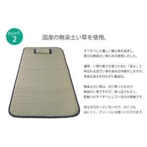 国産無染土い草使用 ごろ寝マット 「しぐれ無染土マット 枕付」 マット:約88×180cm (中材:固綿10mm)