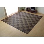 洗える PPカーペット 『ウィード』 ブラウン 約174×220cm