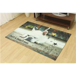 洗える 動物柄ラグマット 【いぬ】 約90×130cm デジタルプリント マイクロ短毛 ホットカーペット対応