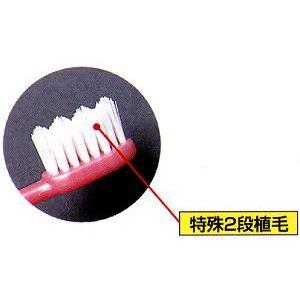 """""""びはく""""歯ブラシ 3本セット - 拡大画像"""