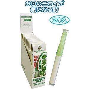 禁煙パイプ増量リフレッシュパイプ2本入(メンソール)【12個セット】29-312