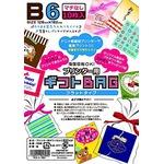 プリンタ用 ギフトバッグ B6 10P 【10個セット】 LI-0308