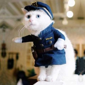 ペット ポリスマン コスチューム 子猫用 PetsLove Pet Policeman Costume X0013RYXOJ-S  h02