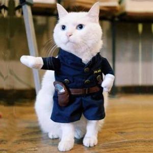 ペット ポリスマン コスチューム 子猫用 PetsLove Pet Policeman Costume X0013RYXOJ-S  h03