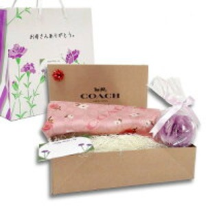 COACH 母の日 ギフトセット シグネチャー スカーフ F41411PELm19