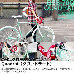 WACHSEN(ヴァクセン) 700c クロモリシングルスピード QUADRAT(クヴァドラート) (高品質・人気自転車・人気サイクル) - 拡大画像
