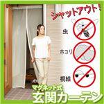 虫よけカーテン 目隠しと虫除けマグネット式カーテン 玄関カーテン 網戸カーテン 蚊や虫をシャットウト 涼しい風を通してエコ 節電