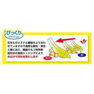 【訳あり・在庫処分】 サンコー びっくりトイレクリーナーケース付WH (BL-93) ホワイト