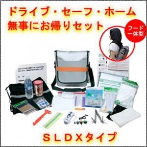 EX.ドライブ・セーフ・ホーム SLDXタイプ - 拡大画像