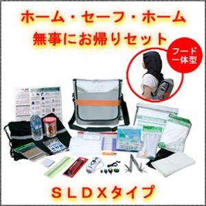 EX.ホーム・セーフ・ホーム SLDXタイプ - 拡大画像