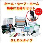 EX.ホーム・セーフ・ホーム SLDXタイプ