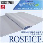 京都西川 ローズアイス敷きパッド(セミダブル)DN-40SD 日本製