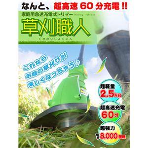 家庭用急速充電式トリマー「草刈職人」 IFD-067 グリーン【4個セット】