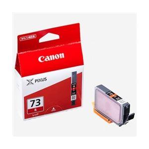 キヤノン(Canon) インクタンク PGI-73R 6400B001 h01