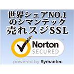 シマンテック・ウェブサイトセキュリティ グローバル・サーバID 1年間有効 IDCP-1Y00000-GS