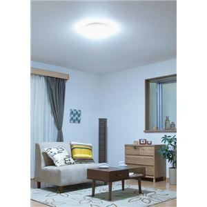 アイリスオーヤマ LEDシーリングライト CL8D-5.0