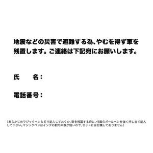 EX.ドライブ・セーフ・ホーム無事にお帰りセッ...の紹介画像4