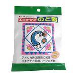 (まとめ買い)エキナケアのど飴 15粒×12セット