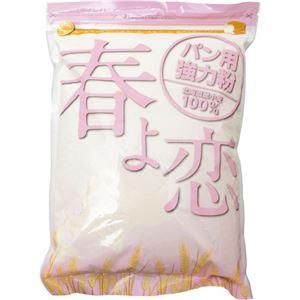 (まとめ買い)春よ恋 100%(パン用強力粉) 1kg×11セット - 拡大画像