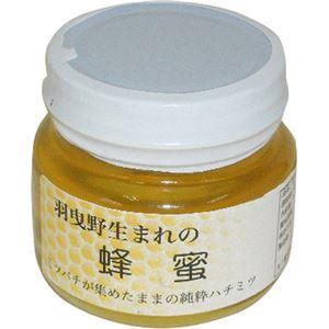 (まとめ買い)山本農園 羽曳野生まれの蜂蜜 ハナミズキ 160g×2セット