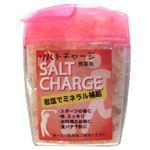 (まとめ買い)アンデスの紅塩 ソルトチャージ 携帯用 47g×15セット