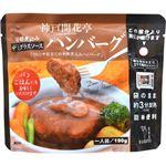(まとめ買い)神戸開花亭 芳醇煮込みハンバーグ デミグラスソース 190g×8セット