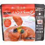 (まとめ買い)神戸開花亭 芳醇煮込みハンバーグ トマトソース 190g×6セット