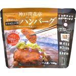 (まとめ買い)神戸開花亭 芳醇煮込みハンバーグ てりやきソース 190g×24セット