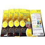 (まとめ買い)アロマスクNeo グレープフルーツの香り 3枚入 5袋セット×2セット