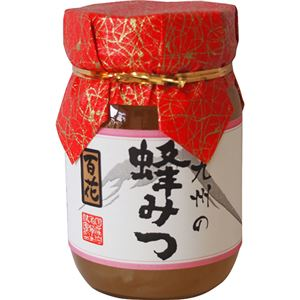 (まとめ買い)九州百花蜂蜜 500g×2セット