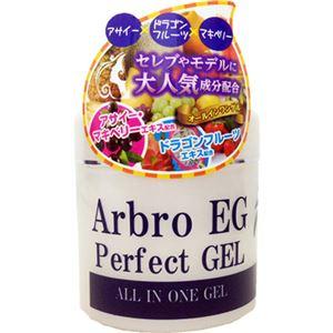 (まとめ買い)アルブロEGパーフェクトゲル 230g×2セット - 拡大画像