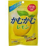 (まとめ買い)【ケース販売】かむかむレモン 30g×10袋×6セット