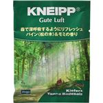 (まとめ買い)クナイプ グーテルフト パイン(松の木)&モミの香り 40g(入浴剤 バスソルト)×25セット