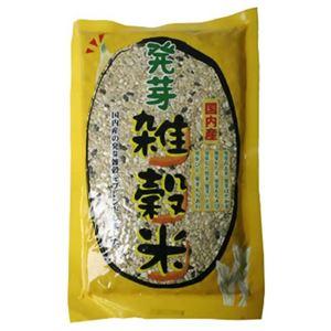 国内産 発芽雑穀米 300gの詳細を見る