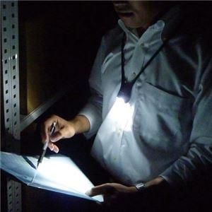 (まとめ) パナソニック LEDネックライト 20Lx 防滴仕様 ブラック BF-AF10P-K(1個) 【×3セット】