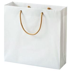 (まとめ) TANOSEE ビニールカバー付手提げ袋 S ヨコ330×タテ320×マチ幅110mm 白無地 1パック(10枚) 【×3セット】