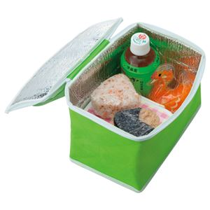 (まとめ) TANOSEE 不織布保冷バッグ ヨコ215×タテ145×マチ幅140mm グリーン 1パック(5枚) 【×2セット】