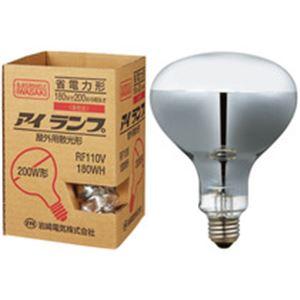 屋外投光用アイランプ 200W形 RF110V180WH