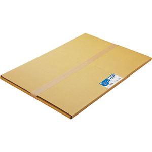 (まとめ)TANOSEE普通紙A1カット594×841mm1箱(100枚)【×2セット】