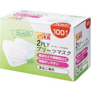 (まとめ)YAMAZEN2PLYプリーツマスクYFM2-1001箱(100枚)【×10セット】