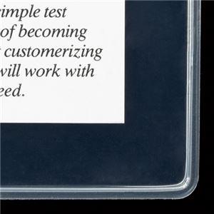 【訳あり・在庫処分】 (まとめ) ライオン事務器 PPソフトカードケース 軟質タイプ A4 A4-SC 1枚 【×30セット】