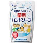 (まとめ) 渋谷油脂 リサイクル薬用ハンドソープ 詰替用パウチ 250ml 1個 【×20セット】