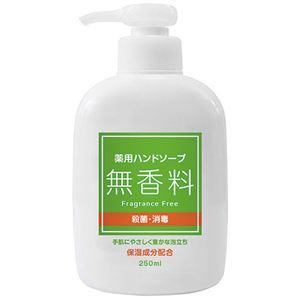 (まとめ) 第一石鹸 薬用ハンドソープ 無香料 本体 250ml 1本 【×20セット】