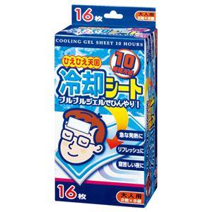 (まとめ) 白金製薬 ひえひえ天国冷却シート10時間 大人用 1箱(16枚:2枚×8袋) 【×10セット】