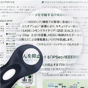 (まとめ) 共栄プラスチックリーディングライトルーペ 黒 RLL-2000 1個 【×3セット】