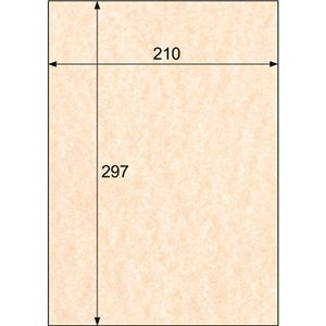 (まとめ)ヒサゴ クラッポヴェール ミカン A4CV07A4 1冊(100枚) 【×3セット】