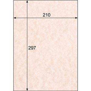 (まとめ)ヒサゴ クラッポヴェール サーモンピンクA4 CV08A4 1冊(100枚) 【×3セット】